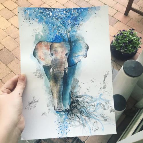 VF-013-Elephant-2017